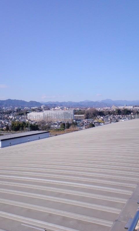 屋根の上で寝てみたい。と、僕はキメ顔でそう言った(無表情)